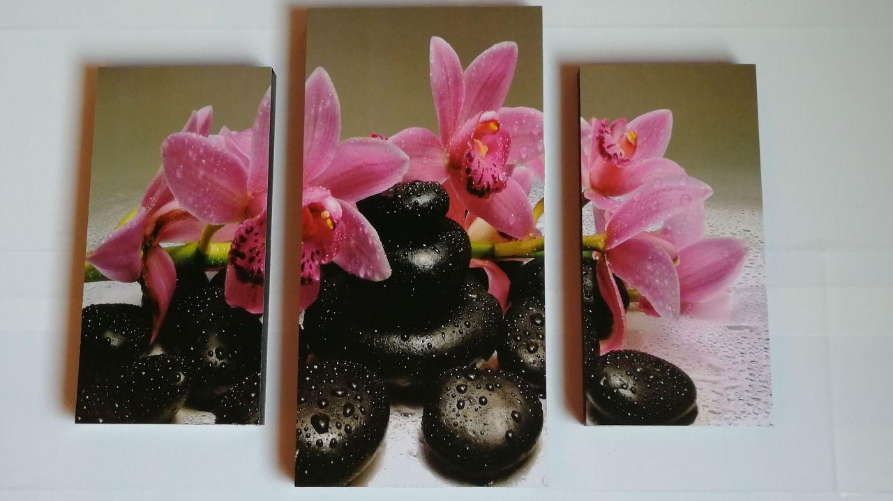Pink Orchidea 3 részes fali kép 50x40