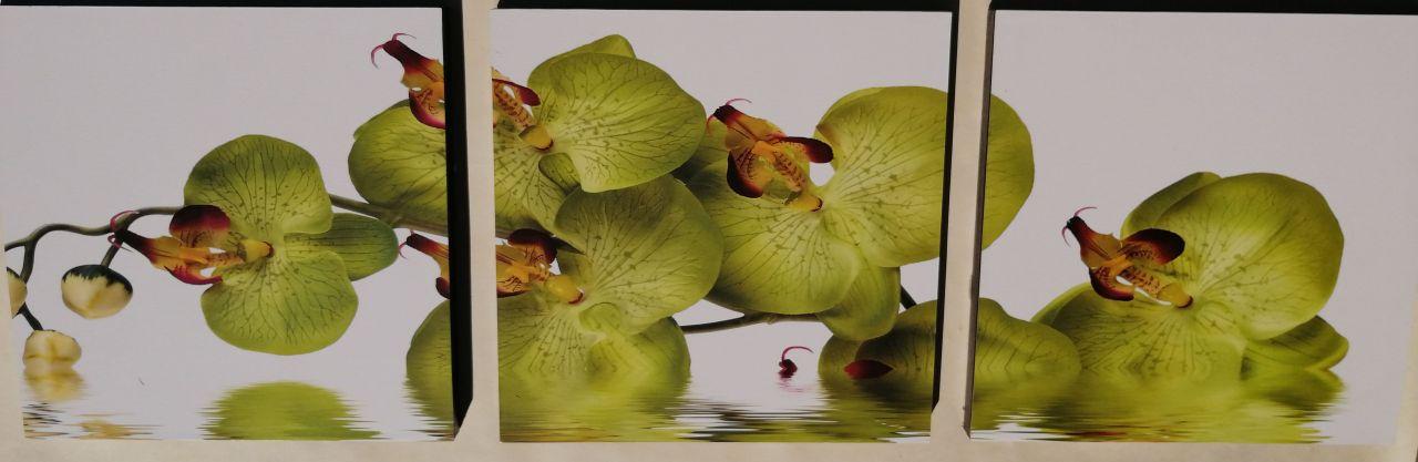 Green Orchidea 3 részes fali kép 90x30