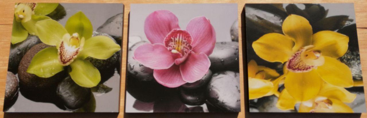 Orchidea Colours 3 részes fali kép 90 x 30